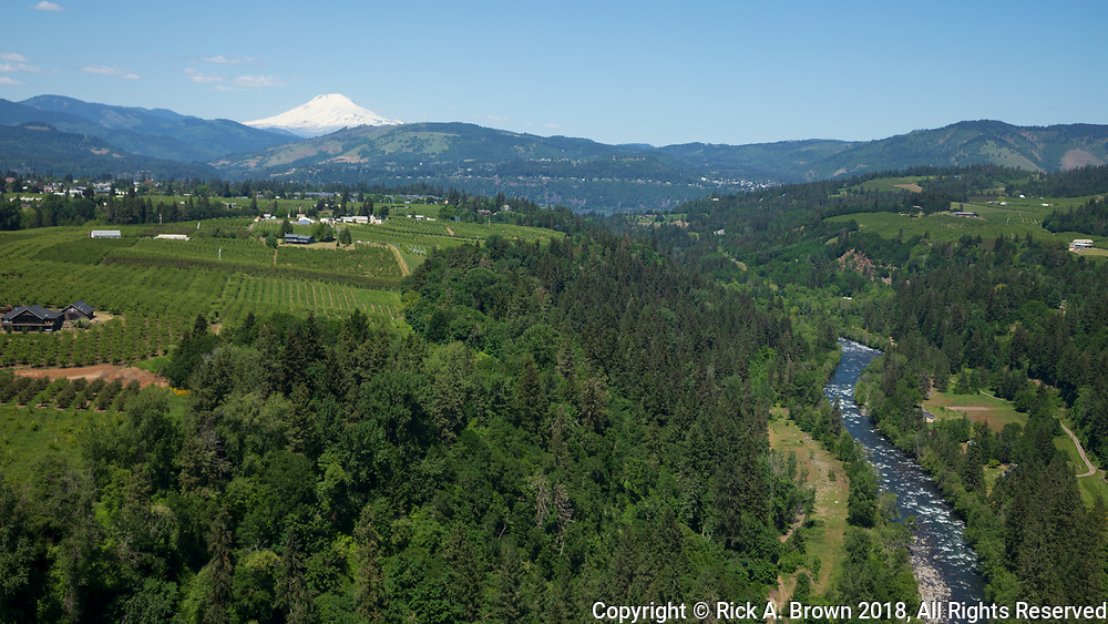 Looking North down the Hood River Valley from the air.