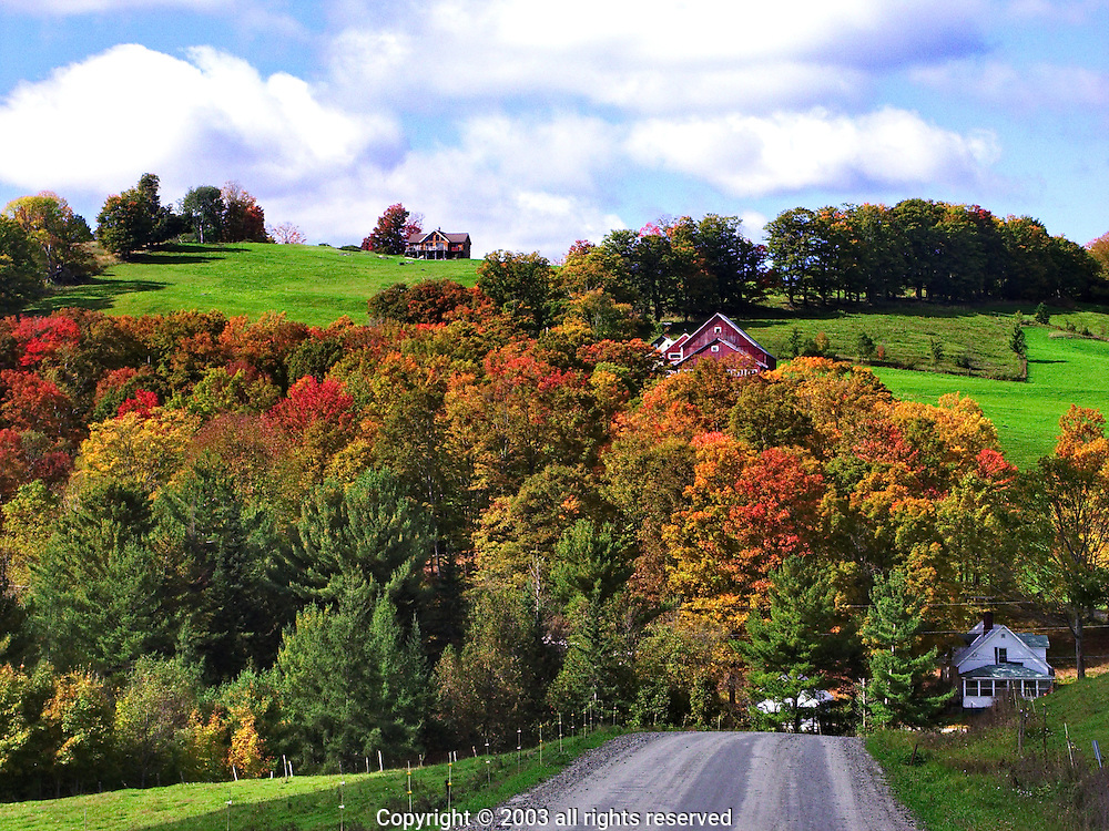 Fall foliage and rolling hills and farmland, danville, vt