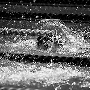 Special Olympics - Latam - 2017