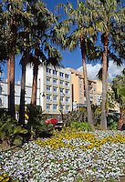 Flowerbed, paseo maritimo, promenade, holiday apartments, town centre, Mediterranean, Mediterraneo, Estepona, Malaga, Andalucia, Andalusia, Spain, Espana, Costa del Sol, tourism, travel, holidays, 201302201142..Copyright Image from Victor Patterson, 54 Dorchester Park, Belfast, UK, BT9 6RJ..Tel: +44 28 9066 1296.Mob: +44 7802 353836.Voicemail +44 20 8816 7153.Skype: victorpattersonbelfast.Email: victorpatterson@me.com.Email: victorpatterson@ireland.com (back-up)..IMPORTANT: If you wish to use this image or any other of my images please go to www.victorpatterson.com and click on the Terms & Conditions. Then contact me by email or phone with the reference number(s) of the image(s) concerned.