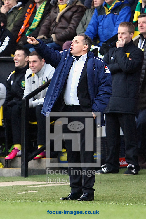 Picture by Paul Chesterton/Focus Images Ltd +44 7904 640267.26/01/2013.Luton Town Manager Paul Buckle during The FA Cup 4th Round match at Carrow Road, Norwich.