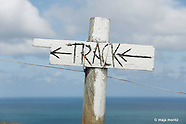 Banks Peninsula Track