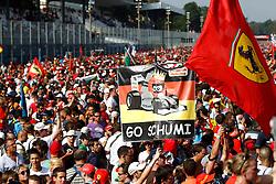 "Motorsports / Formula 1: World Championship 2010, GP of Italy, fans, ""Go Schumi"" (Michael Schumacher)"