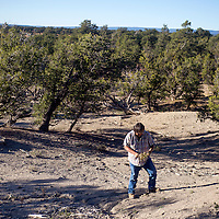 100213       Cable Hoover<br /> <br /> Botanist Arnold Clifford collects samples of local flora from the hills outside Mountain View Wednesday.