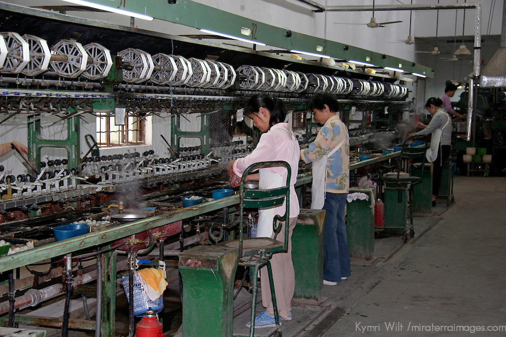 Asia, China, Suzhou. A factory room in Suzhou demonstrates the process fo sericulture.
