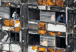October 14, 2017 - London, United Kingdom -  Work Begins To Cover Grenfell Tower...Forensic investigators working inside Grenfell tower. Scaffolding has been put up alongside Grenfell Tower in west London in preparation for a white sheet covering to shield its view from the public. Around 80 people died and hundreds were left homeless during the disaster on 14 June 2017, four months ago. Investigators will remove remnants of the cladding, which fuelled the fire on the tower block.  (Credit Image: © Dinendra Haria/i-Images via ZUMA Press)