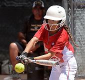 State High School Softball 2018