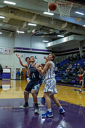 21 January 2019:1st round game of the 108th McLean County Tournament at El Paso - Gridley High School in El Paso Illinois.  Ridgeview Mustangs v Tri Valley Vikings boys