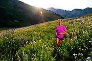 Angela Hicks trail running on one of the many roads and trails in Albion Basin during the wildflower peak. Little Cottonwood Canyon, Utah