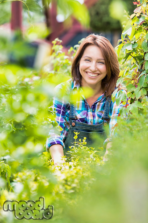 Portrait of smiling mature woman checking plants in the garden