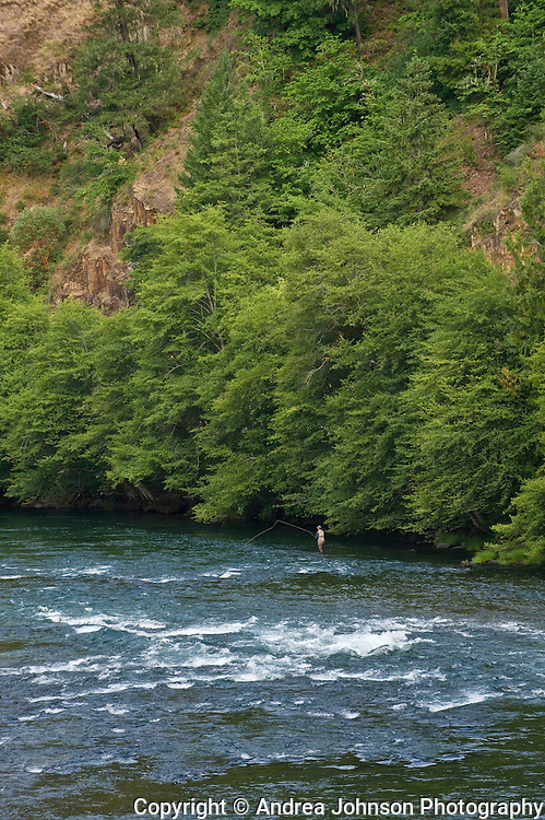 Steamboat Inn is renowned for  its winemaking dinners, friendliness, and 31 miles of 'fly-fishing only' waters overlooking the North Umqua River, Southern Oregon.
