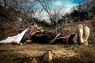 """Los restos de un hombre sin vida fueron localizados en un camino de terraceria que lleva al campo Morelia en la Sindicatura de Costa Rica, la victima no ha sido identificada, el cuerpo tenia una cobija y se encontraba amarrado de pies y manos con cinta canela; a un lado se encontró un mensaje que decía """"esto va para los balcones, los ratas, los asaltantes y tumba carros del diez, para que respeten a la gente humilde""""."""