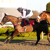 Reality Show and D Fentman winning the 2.30 race