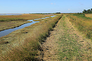 River Ore salt marsh coastal flood defence bank and footpath, looking towards Shingle Street, Hollesley, Suffolk, England, UK