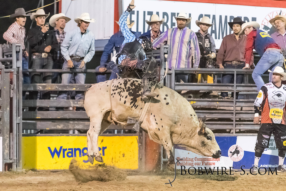 Bull rider Levi Wilson rides Summit Pro Rodeo's Hou's Blue in the second performance of the Elizabeth Stampede on Saturday, June 2, 2018.