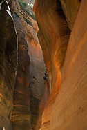 Water-sculpted sandstone in very narrow slot canyon glows in bounced sunlight from nearby canyon walls, Orderville Canyon, © 1999 David A. Ponton