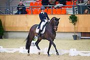 Gabrielle Rost de Groot - Bibi Vita<br /> KNHS Indoorkampioenschappen 2018<br /> © DigiShots
