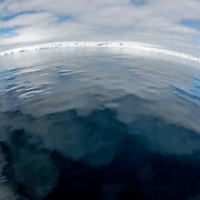 A wide-angle fisheye shot of calm waters and snow-covered coastline in Fournier Bay in Antarctica.
