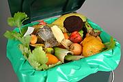 Trash bin full of organic garbage