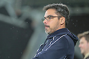 David Wagner (Huddersfield Town) during the Sky Bet Championship match between Huddersfield Town and Rotherham United at the John Smiths Stadium, Huddersfield, England on 15 December 2015. Photo by Mark P Doherty.