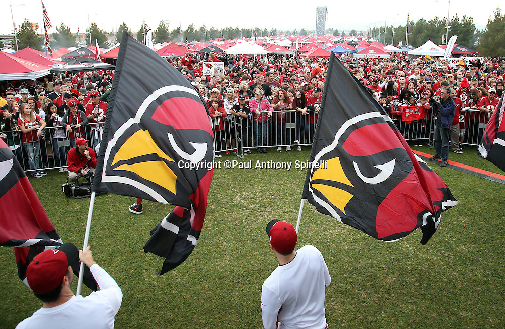 Flags wave as a crowd of fans looks on during a pep rally on the Great Lawn before the Arizona Cardinals NFL NFC Divisional round playoff football game against the Green Bay Packers on Saturday, Jan. 16, 2016 in Glendale, Ariz. The Cardinals won the game in overtime 26-20. (©Paul Anthony Spinelli)
