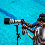 4/27/1811:31:12 AM --- Big West Women's Water Polo Tournament, Crawford Pool at UC Irvine, Irvine, CA<br /> <br /> Photo by Owen Main / Sports Shooter Academy