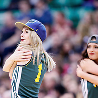 25 January 2016: America First Jazz Dancers perform during the Detroit Pistons 95-92 victory over the Utah Jazz, at the Vivint Smart Home Arena, Salt Lake City, Utah, USA.