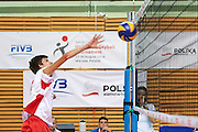 Volleyball match final between SO Serbia (white-red) and SO Germany (black) during of The Special Olympics Unified Volleyball Tournament at Ursynow Arena in Warsaw on August 29, 2014.<br /> <br /> Poland, Warsaw, August 29, 2014<br /> <br /> For editorial use only. Any commercial or promotional use requires permission.<br /> <br /> Mandatory credit:<br /> Photo by &copy; Adam Nurkiewicz / Mediasport