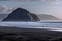 090-P94659<br /> <br /> Morro Strand State Beach<br /> &copy;2016, California State Parks.<br /> Photo by Brian Baer