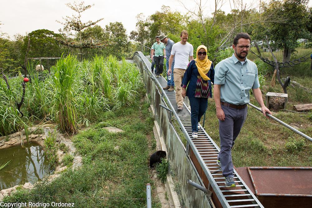 Visitors walk on an elevated footbridge over the enclosure at the Sun Bear Sanctuary run by the Borneo Orangutan Survival Foundation in the Samboja Lestari conservation area in Kutai Kartanegara district, East Kalimantan, Indonesia, on March 13, 2016. <br /> (Photo: Rodrigo Ordonez)