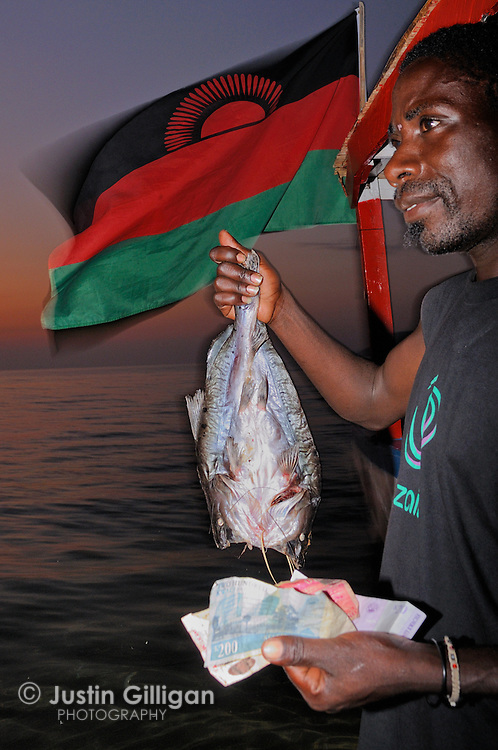 A Kampango is sold on the beach at Cape Maclear, Lake Malawi, Malawi.