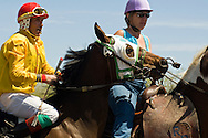 Race horse being ponied to starting gate, Miles City, Montana