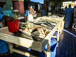 Pic of a fish market in Khor al Fakkan, taken on an iPhone6. Images from the MSC Musica cruise to the Persian Gulf, visiting Abu Dhabi, Khor al Fakkan, Khasab, Muscat, and Dubai, traveling from 13/12/2015 to 20/12/2015.