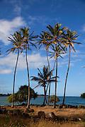 Wailua River State Beach Park, Kauai, Hawaii