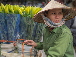 Asia, Vietnam, Hanoi, old quarter, Woman wearing conical Non La hat, selling flowers. Editorial Use Only.