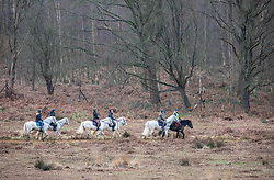 © Licensed to London News Pictures. 15/02/2020. London, UK. Horse riders in Richmond Park this morning as Storm Dennis is set to hit London and the South East with high winds and heavy rain forecast for the weekend. Photo credit: Alex Lentati/LNP