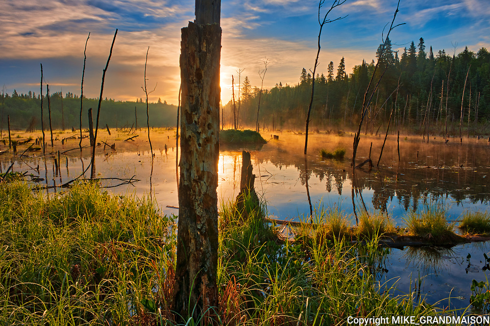 Wetland at sunrise on Kendall Inlet Road<br />Kenora<br />Ontario<br />Canada