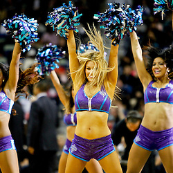 Jan 19, 2013; New Orleans, LA, USA; New Orleans Hornets Honeybees perform during  the second quarter of a game against the Golden State Warriors at the New Orleans Arena. The Warriors defeated the Hornets 116-112. Mandatory Credit: Derick E. Hingle-USA TODAY Sports