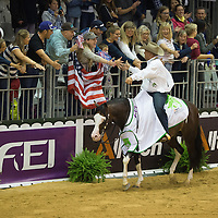 Reining Individual Final Competition