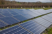 Solar/photovoltaic panels. Wales, UK. PV panels floor mounted in one of the fields near Llanerchaeron House - a Welsh property of The National Trust. The National Trust has cut energy use in its Wales region by 41% over two years. As well as installing renewable sources of energy they have used a combination of efficiency measures, sustainable heating technologies and culture change.