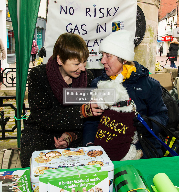 Pictured: Caroline Lucas met anti-fracking protester Janet Falconer and her Scottish Terrier Milly when she was in Falkirk.<br /> <br /> As part of her visit to Scotland to support Greens candidates in the Scottish election, Green MP Caroline Lucas joined Scottish Greens colleagues Maggie Chapman, Greens co-convener, Mark Ruskell, candidate for Mid Scotland and Fife, Kirsten Robb, candidate for Central Scotland and John Wilson, candidate for Central Scotland, to meet anti-fracking campaigners in Falkirk <br /> <br /> Ger Harley   EEm 29 April 2016