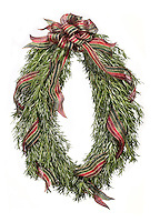 rosemary wreath with red and green ribbon