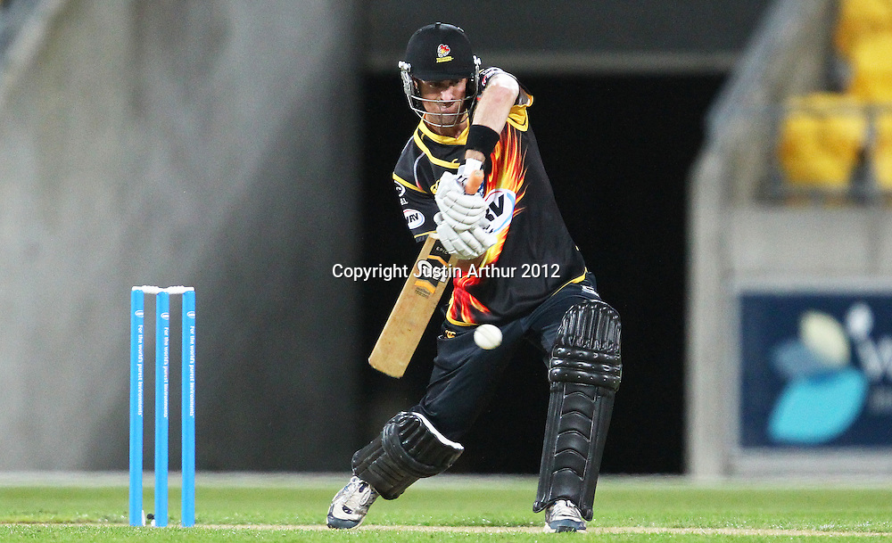Firebirds' Michael Pollard during the 2012/2013 HRV Cup Twenty20 session. Wellington Firebirds v Canterbury Wizards at Westpac Stadium, Wellington, New Zealand on Friday 9 November 2012. Photo: Justin Arthur / photosport.co.nz
