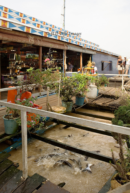 Tonle Sap lake :an enclosed  fish tank in the deck of a floating restaurant.   It seems crowded with lively splashing and jumping fish who are likely to become someone's meal soon.