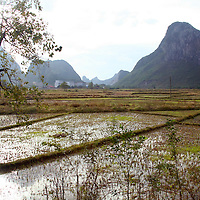 Asia, China, Guilin.  Rice paddies and fields cover the countryside in rural Guilin.