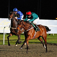 Kempton 25th January