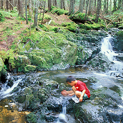 A young boy explores Tolman Brook on land currently owned by Hancock Timber.  Northern Forest. Paul Stream Watershed (CT River.)  Granby, VT