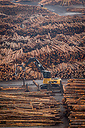 A lumber yard along the Columbia River in Oregon. Timber is being prepared to be loaded onto ships for export.
