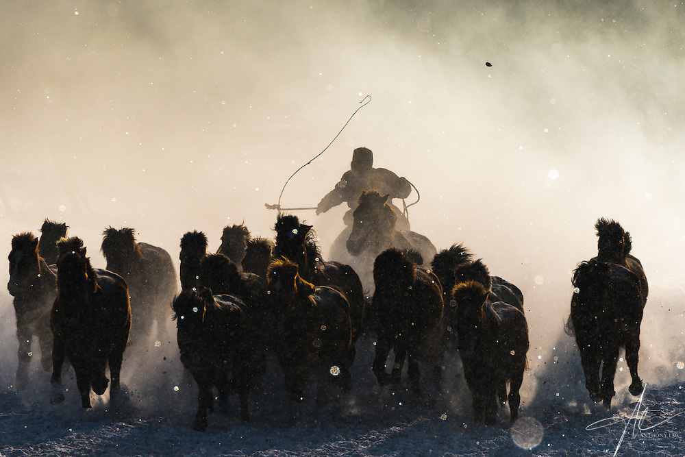 Inner Mongolia horseman engulfed by mist in a freezing winter's morning.