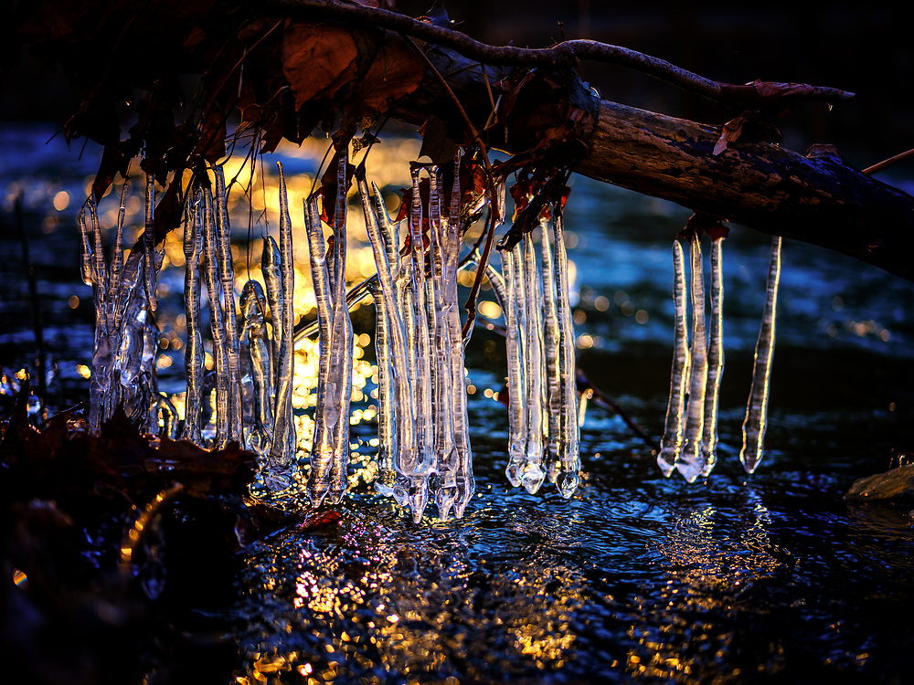 Backlit ice sticks on the Patapsco River at Oella, MD.